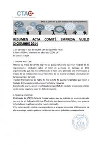 Comité empresa vuelo diciembre 2014